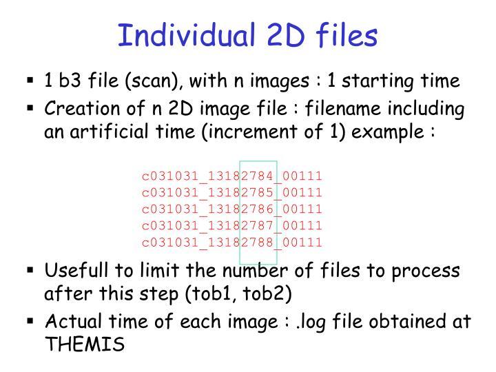 Individual 2D files