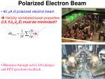 polarized electron beam