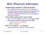 mac physical addresses