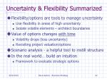 uncertainty flexibility summarized