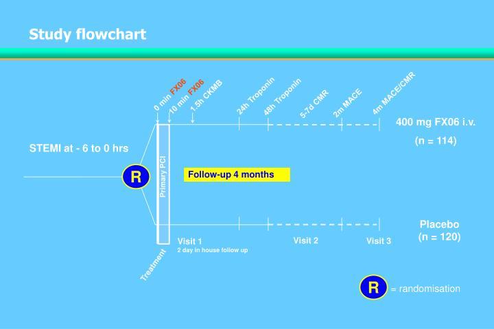 Study flowchart