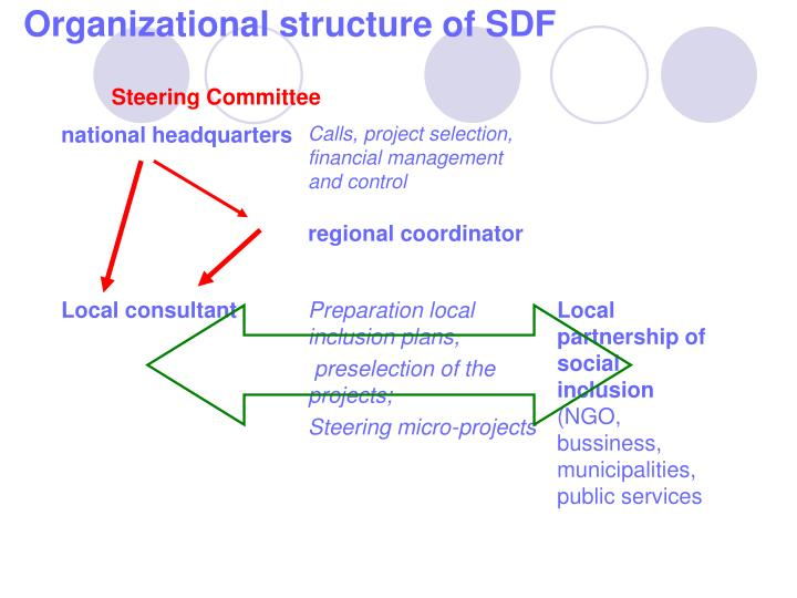 Organizational structure of SDF