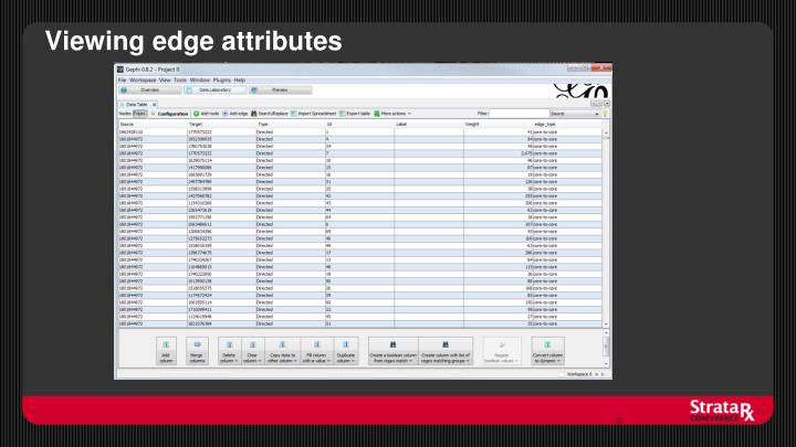 Viewing edge attributes