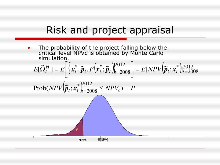 Risk and project appraisal