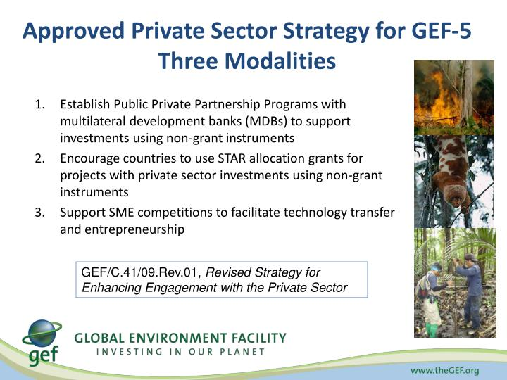 Approved Private Sector Strategy for GEF-5