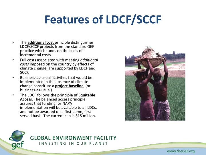 Features of LDCF/SCCF
