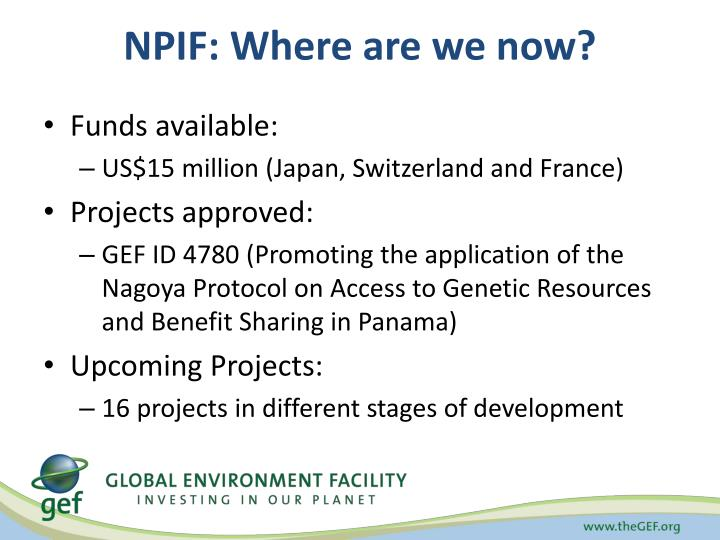 NPIF: Where are we now?
