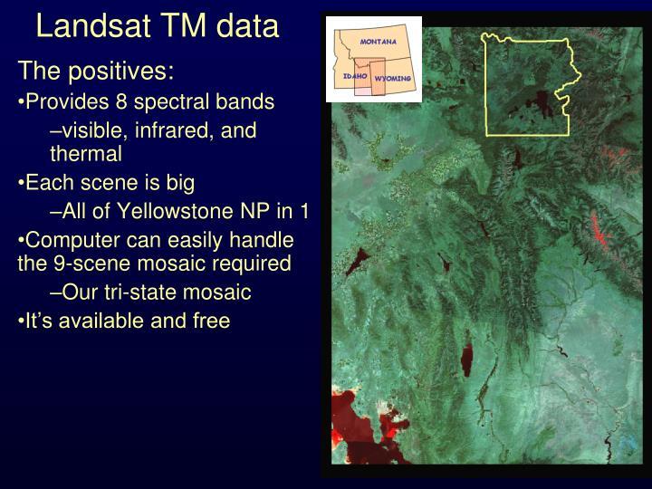 Landsat TM data