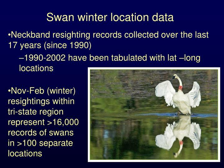 Swan winter location data