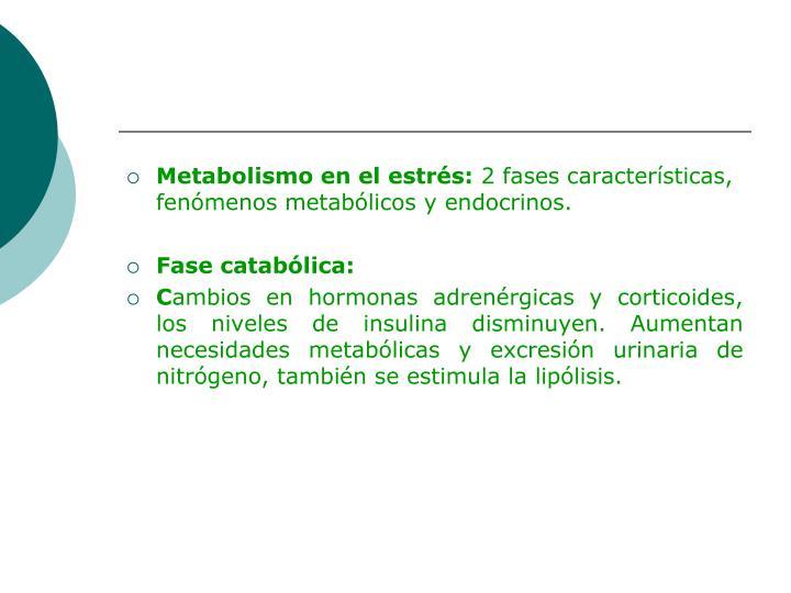 Metabolismo en el estrés: