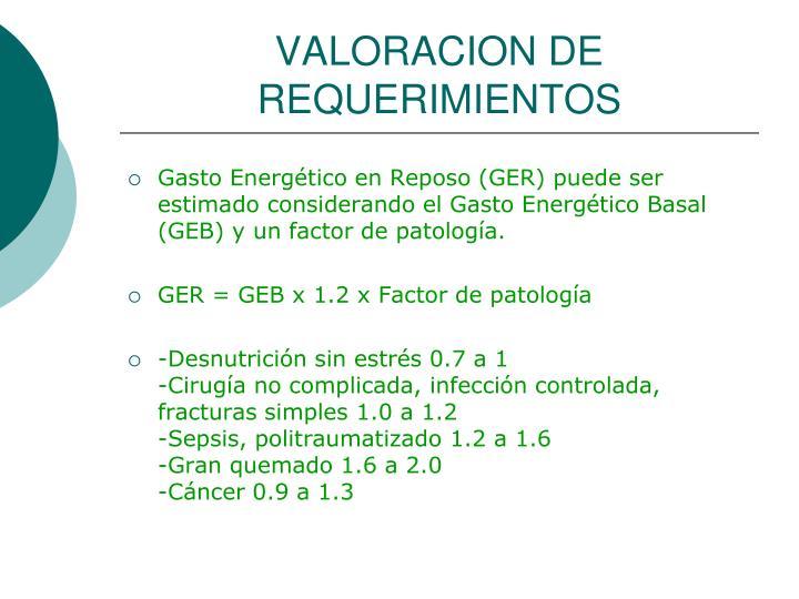 VALORACION DE REQUERIMIENTOS