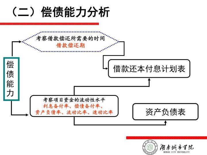 (二)偿债能力分析