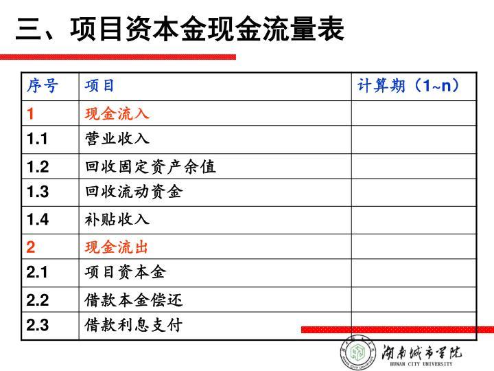 三、项目资本金现金流量表