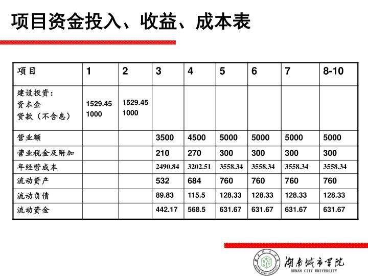 项目资金投入、收益、成本表