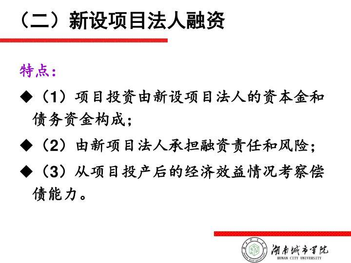 (二)新设项目法人融资
