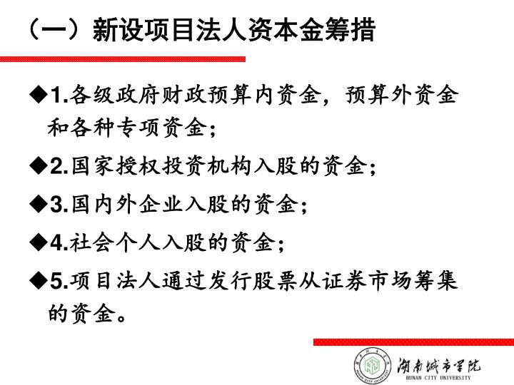 (一)新设项目法人资本金筹措