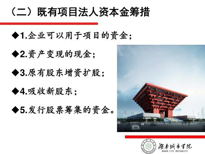 (二)既有项目法人资本金筹措