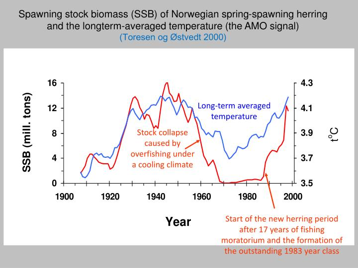 Spawning stock biomass (SSB) of Norwegian spring-spawning herring and the longterm-averaged temperature (the AMO signal)