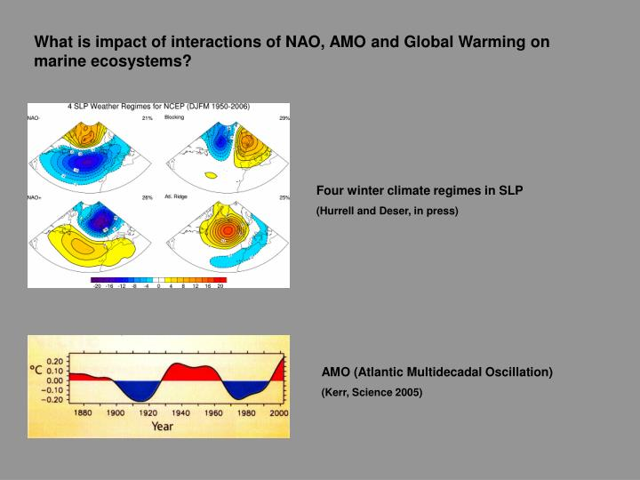 What is impact of interactions of NAO, AMO and Global Warming on marine ecosystems?