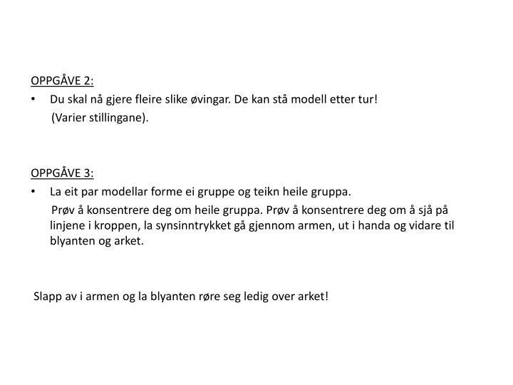 OPPGÅVE 2: