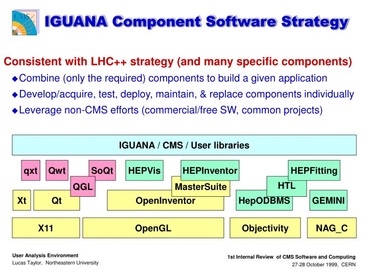 IGUANA Component Software Strategy