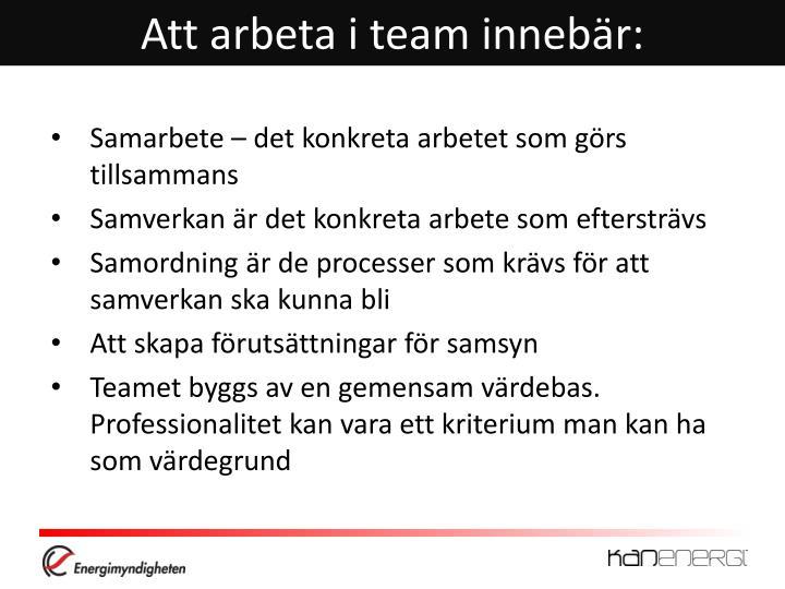 Att arbeta i team innebär: