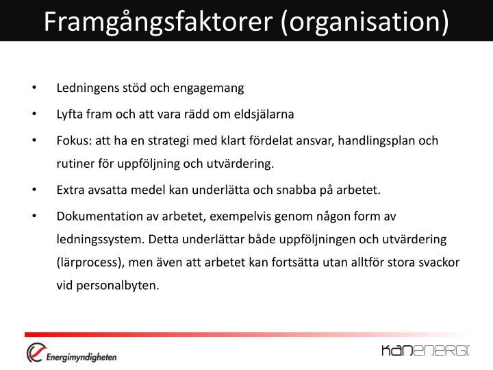 Framgångsfaktorer (organisation)