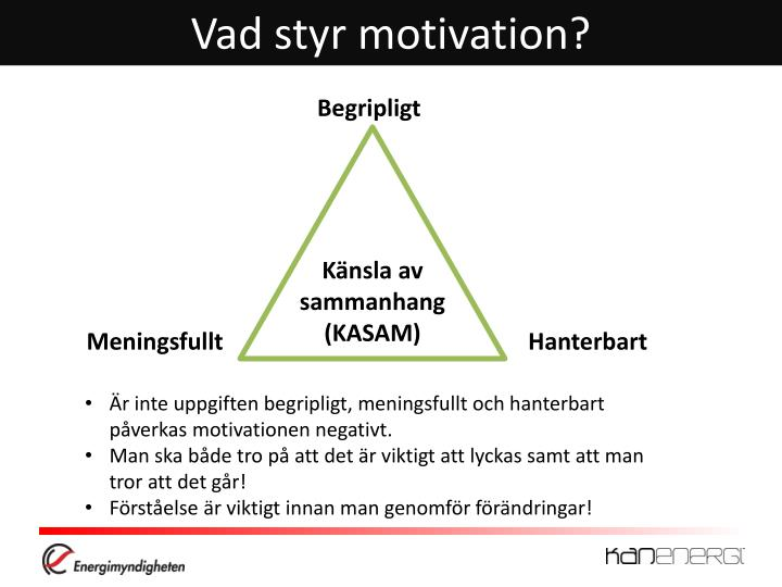 Vad styr motivation?