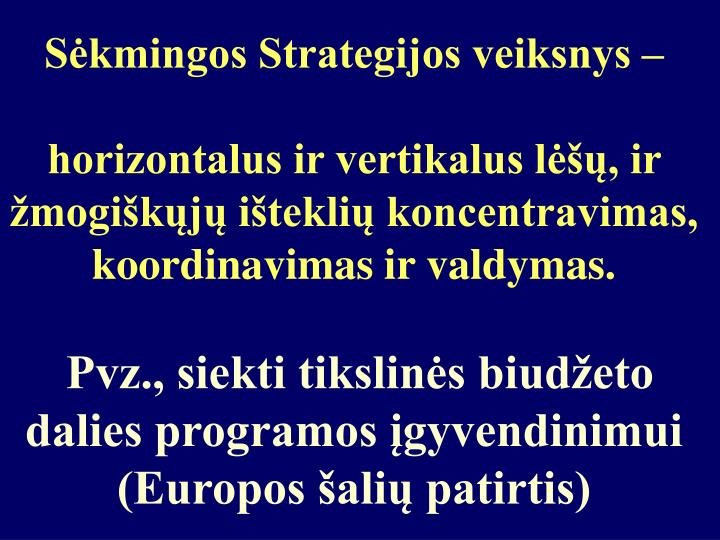 Sėkmingos Strategijos veiksnys –