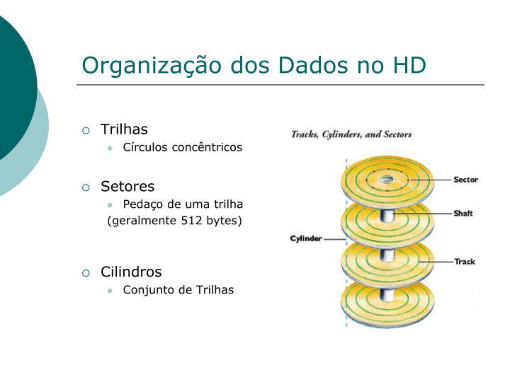 Organização dos Dados no HD