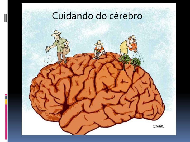 Cuidando do cérebro