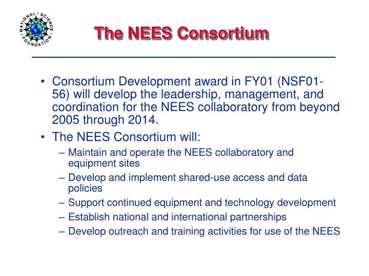 The NEES Consortium