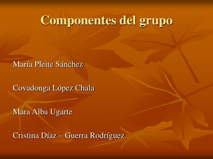 Componentes del grupo