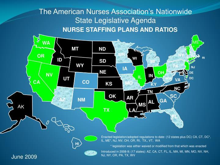 The American Nurses Association's Nationwide State Legislative Agenda