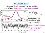 w boson mass1