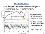 w boson mass2
