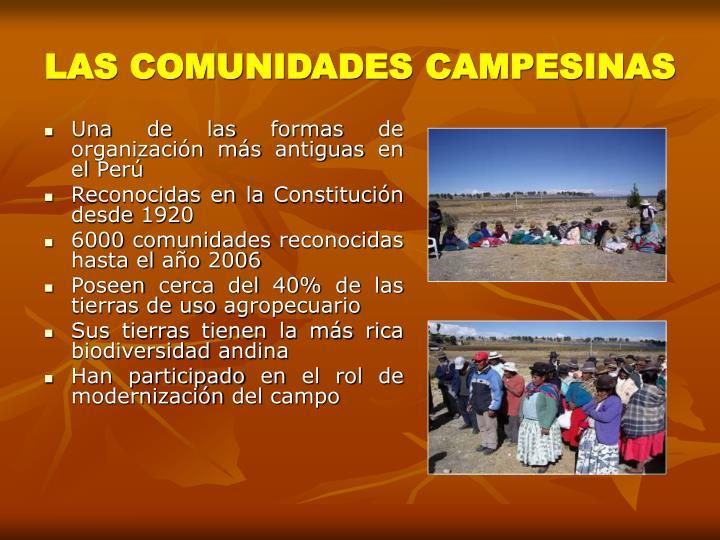 LAS COMUNIDADES CAMPESINAS