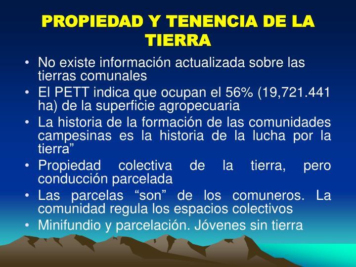 PROPIEDAD Y TENENCIA DE LA TIERRA