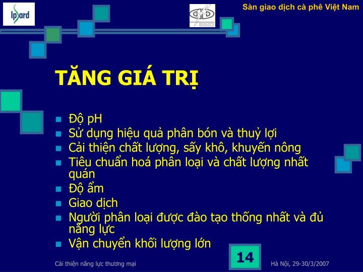 Sàn giao dịch cà phê Việt Nam