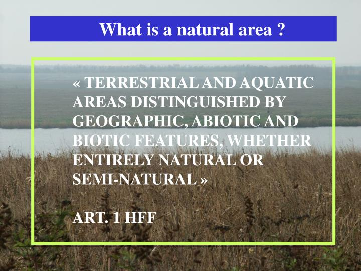 What is a natural area ?