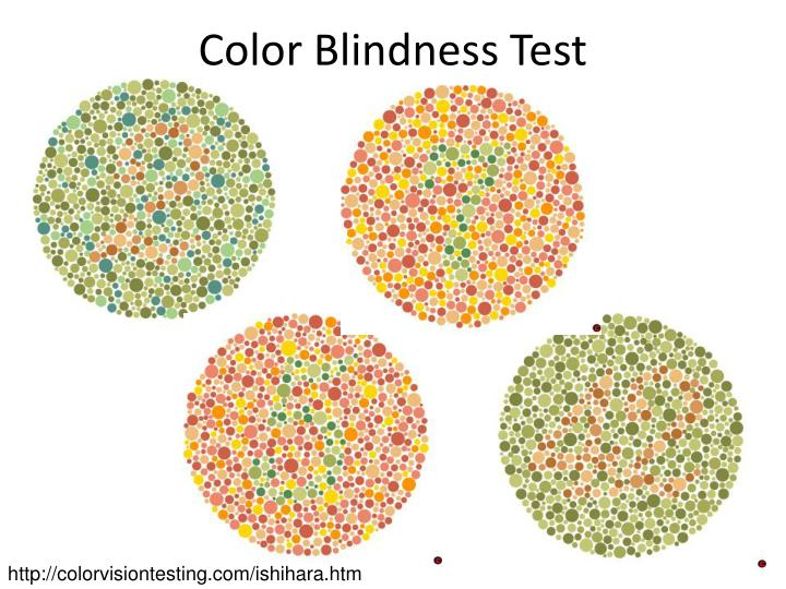 What Causes Color Blindness?