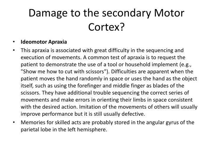 Damage to the secondary Motor Cortex?