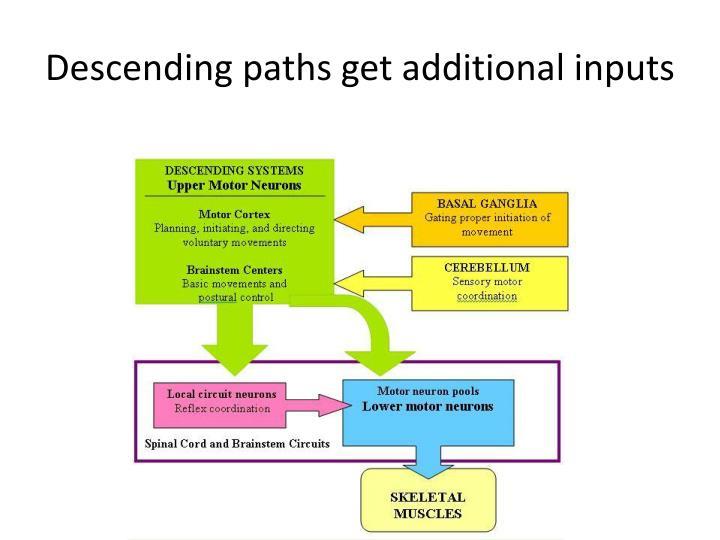 Descending paths get additional inputs