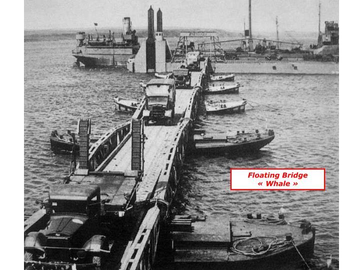 Floating Bridge «Whale»