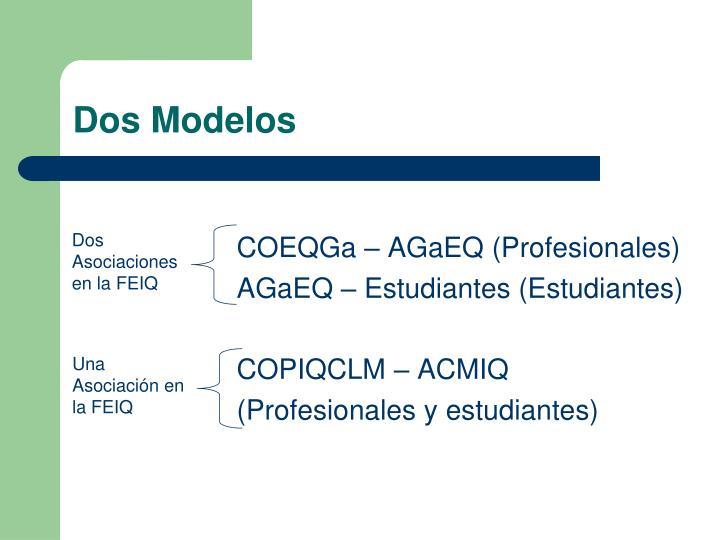 COEQGa – AGaEQ (Profesionales)