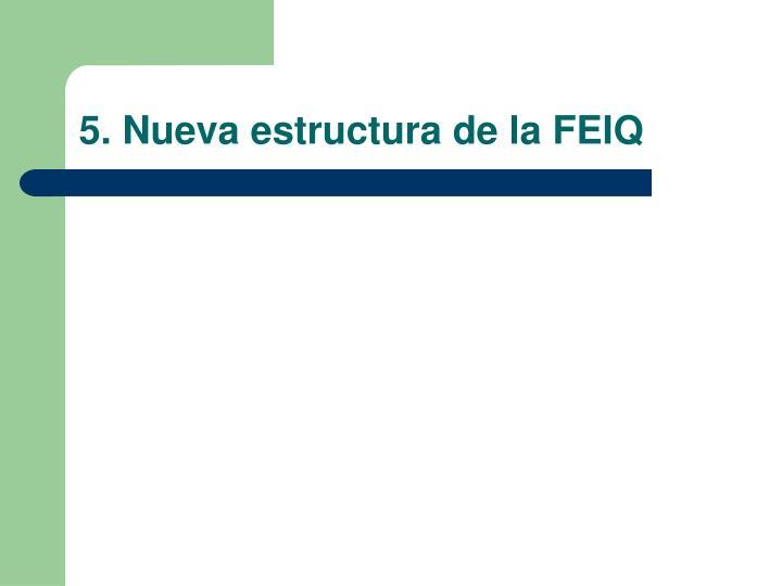 5. Nueva estructura de la FEIQ