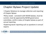 chapter bylaws project update