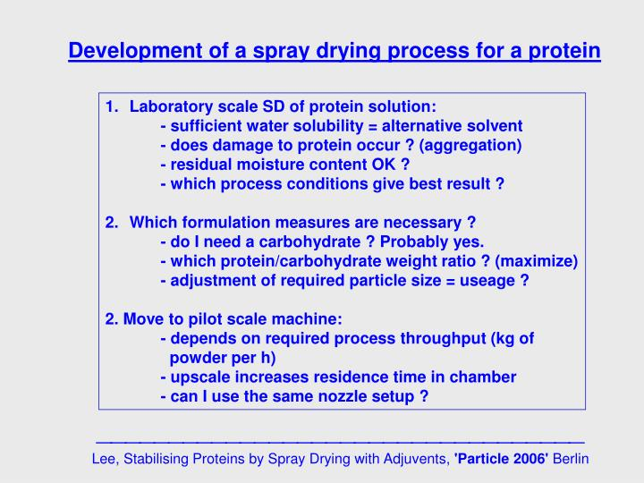 Development of a spray drying process for a protein