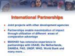 inter national partnerships