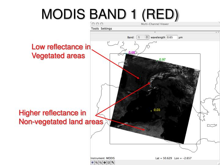 MODIS BAND 1 (RED)